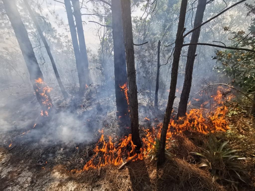 Polícia Civil conclui inquérito sobre incêndios