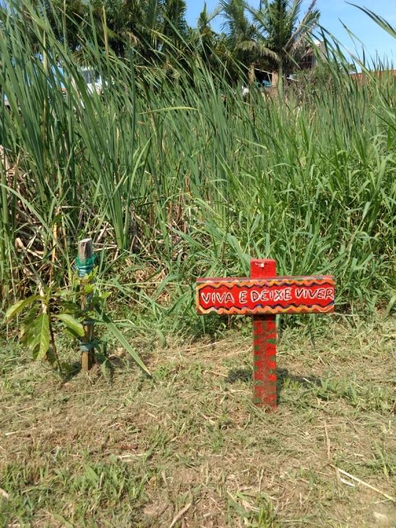 Família se dedica à conservação do rio Capivari