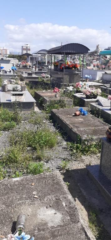 Estefano solicita manutenção e limpeza dos cemitérios