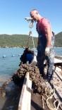 Maricultura: Praia do Pontal e Cedro interditadas