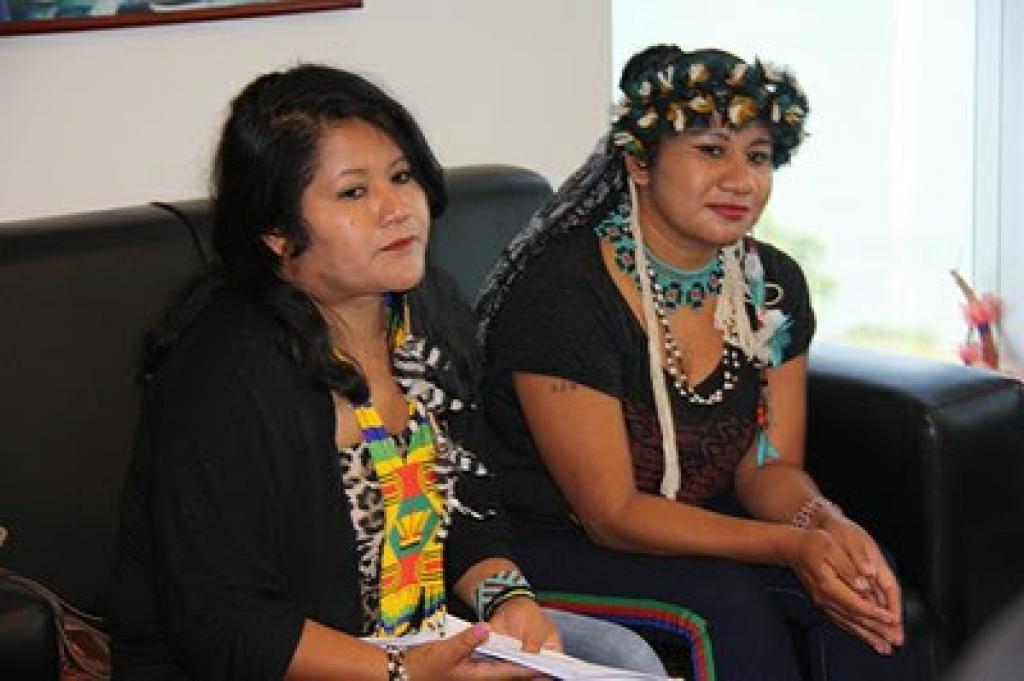 Procuradora-geral da República defende indígenas