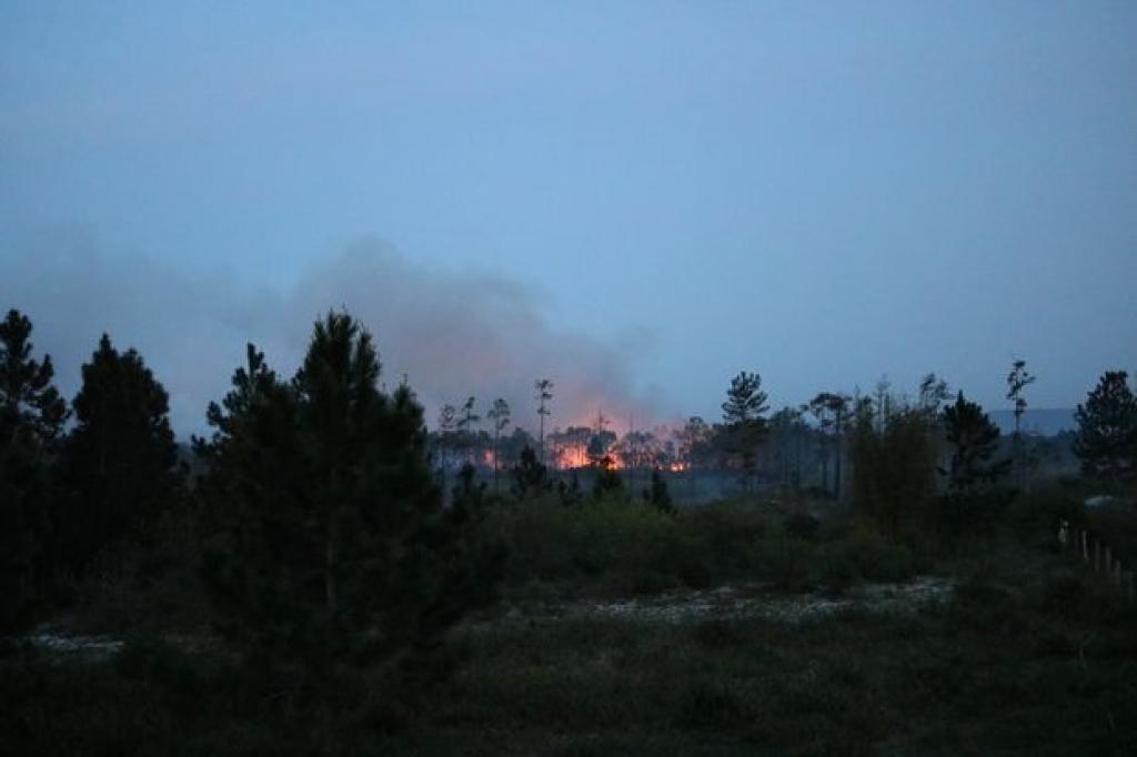 Novo incêndio no Parque da Serra do Tabuleiro