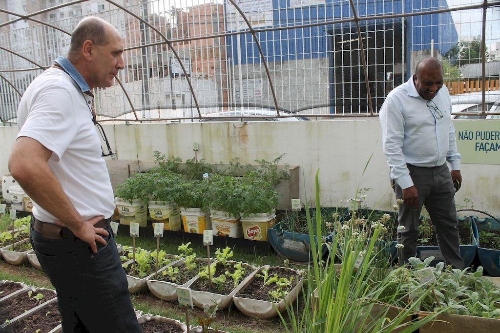 Horta comunitária envolve funcionários no ViaCatarina
