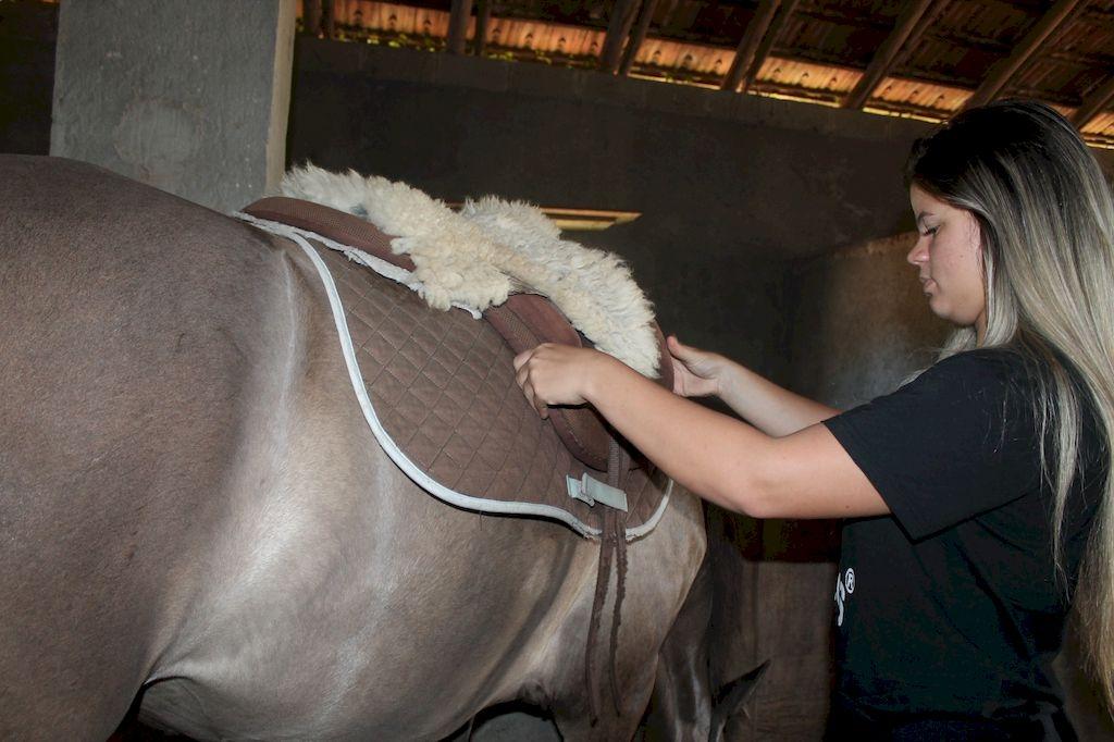 Férias em Palhoça: equitação