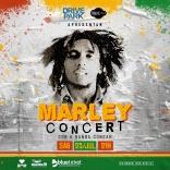 Programação do Drive Park tem filmes e Bob Marley
