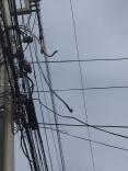 Furto de fiação elétrica causa prejuízos