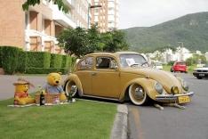 Encontro reúne carros antigos no Caminho Novo