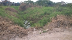 Sacolas nos pés para encarar lama no Pachecos