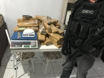 Polícia Civil apreende 50kg de maconha em Palhoça