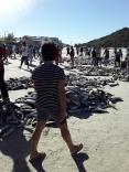 Safra encerra com 41 mil tainhas capturadas