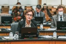 Dirce: PL beneficia mulheres vítimas de violência