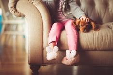 Como cuidar dos animais de estimação no inverno
