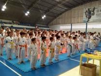 Equipe de Palhoça é ouro em torneio de taekwondo
